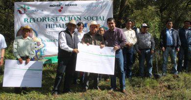 Reforestación social y entrega de recursos por la CONAFOR en Singuilucan.