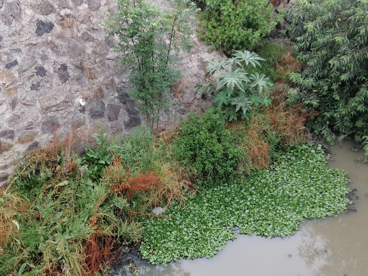 Buscará la CAAMT clausurar descargas de drenaje al Río Chico