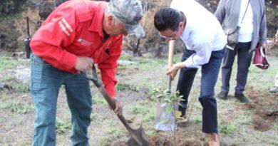 «Hidalgo Siembra Contigo» al rescate de las áreas afectadas por incendios forestales